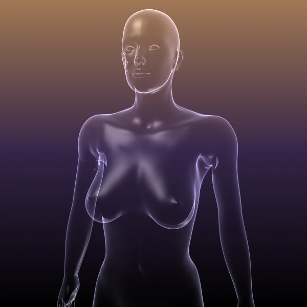 female body anatomy 3d model 3ds max dxf dwg fbx cob c4d dae x lwo hrc xsi  obj 116157