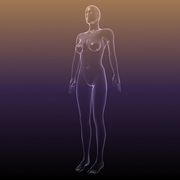 female body anatomy 3d model 3ds max dxf dwg fbx cob c4d dae x lwo hrc xsi  obj 116158