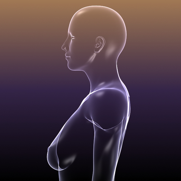 female body anatomy 3d model 3ds max dxf dwg fbx cob c4d dae x lwo hrc xsi  obj 116159