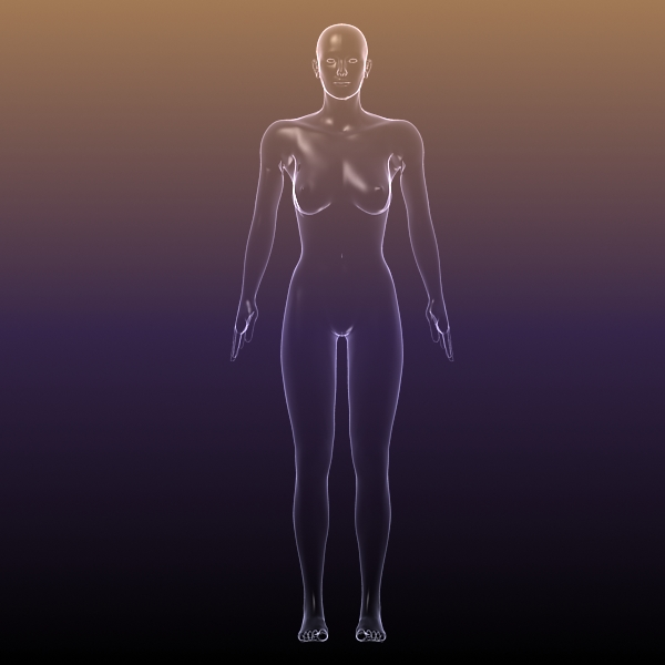female body anatomy 3d model 3ds max dxf dwg fbx cob c4d dae x lwo hrc xsi  obj 116163