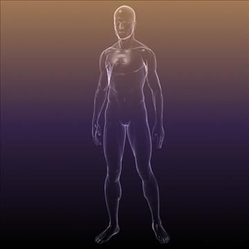 ljudsko tijelo silueta muškog 3d modela 3ds max dxf dwg fbx c4d lwo hrc xsi wrl wrz obj 112048