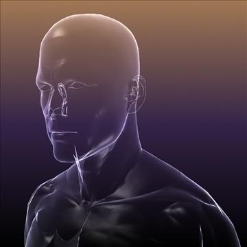 ljudsko tijelo silueta muškog 3d modela 3ds max dxf dwg fbx c4d lwo hrc xsi wrl wrz obj 112049