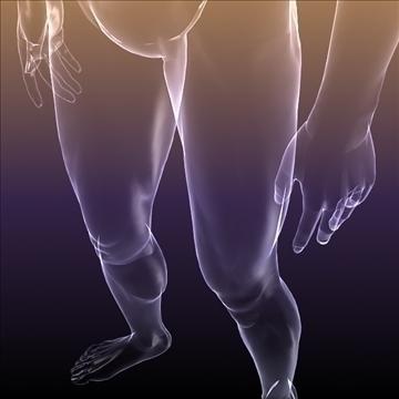 ljudsko tijelo silueta muškog 3d modela 3ds max dxf dwg fbx c4d lwo hrc xsi wrl wrz obj 112050