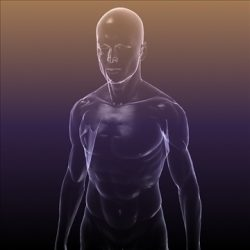 Human body silhouette of a Male ( 62.42KB jpg by 5starsModels )