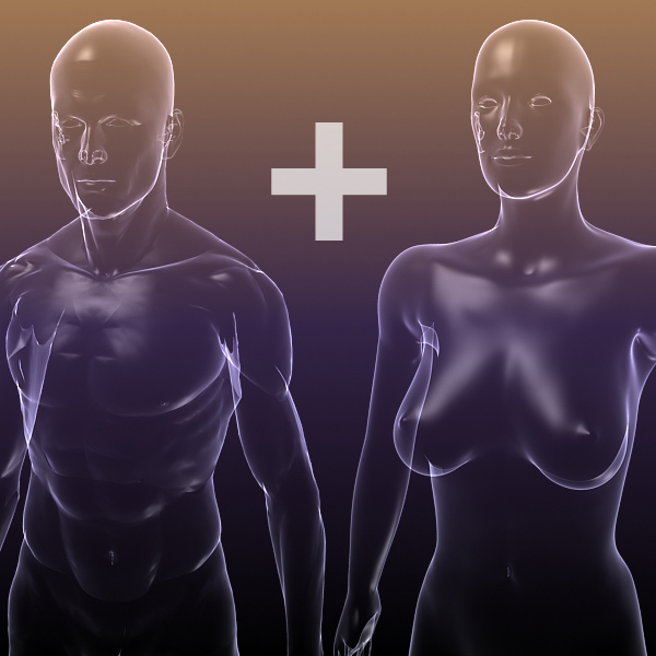 male and female anatomy – transparent bodies 3d model 3ds max dxf dwg fbx cob c4d dae x lwo hrc xsi  wrl wrz obj 117702