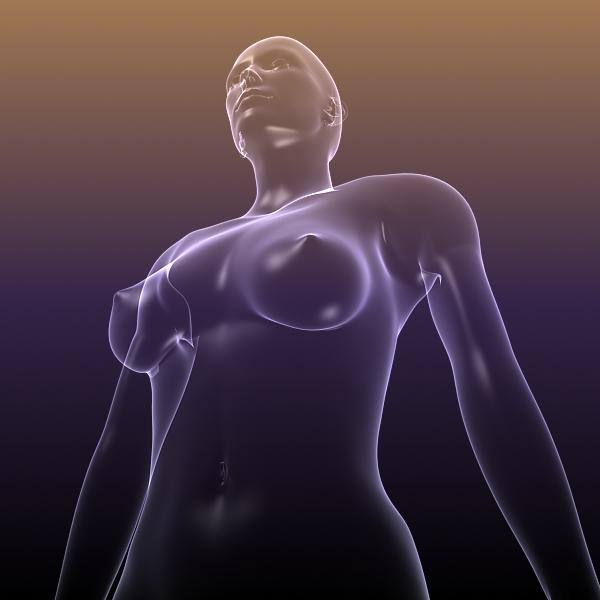 muška i ženska anatomija - transparentna tijela 3d model 3ds max dxf dwg fbx cob c4d dae x lwo hrc xsi wrl wrz obj 117712