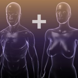 Male And Female Anatomy - transparent bodies ( 126.98KB jpg by 5starsModels )