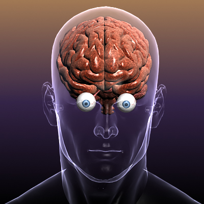 Brain with Eyes in a Human Body ( 123.91KB jpg by 5starsModels )