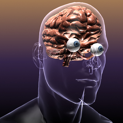 Brain with Eyes in a Human Body ( 124.23KB jpg by 5starsModels )