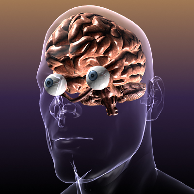 Brain with Eyes in a Human Body ( 129.58KB jpg by 5starsModels )