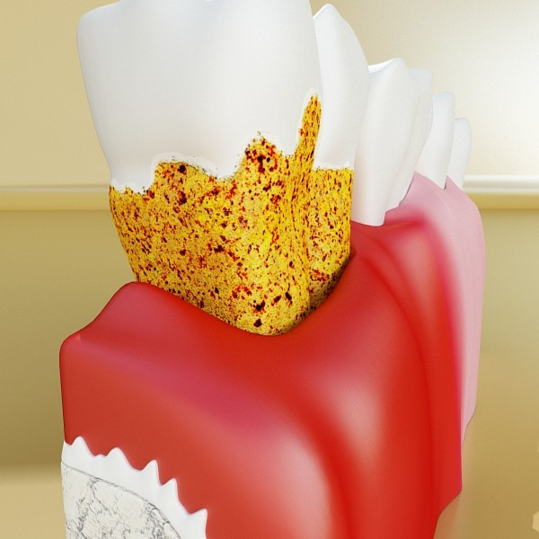 teeth high detail 3d model 3ds max fbx obj 129996