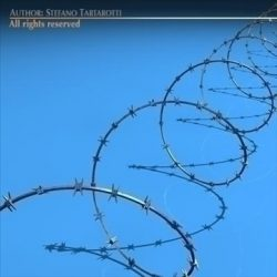 Barbed wire ( 65.6KB jpg by tartino )