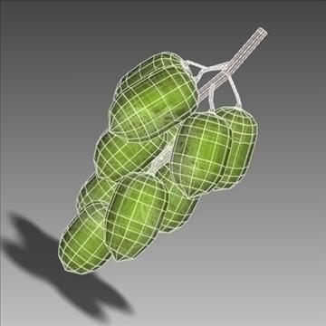 green grape 3d model 3ds max lwo hrc xsi obj 104527