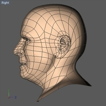 john mccain head.zip 3d model 3ds dxf fbx c4d x obj 109757