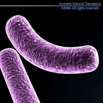 Mga modelo ng micro cells koleksyon 3d modelo c4d 3ds obj 78131