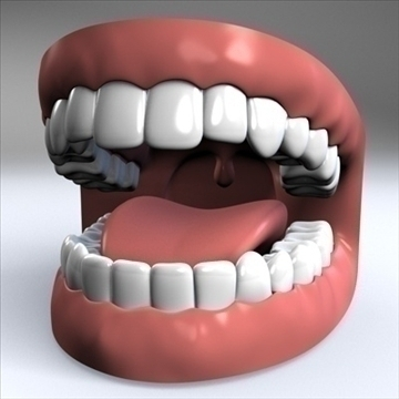 mouth.zip 3d model 3ds dxf fbx c4d x obj 90953
