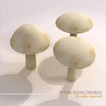 mushrooms 3d model 3ds dxf c4d obj 101574