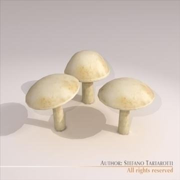 mushrooms 3d model 3ds dxf c4d obj 101575