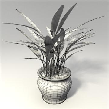 plant 3d model 3ds blend obj 103688