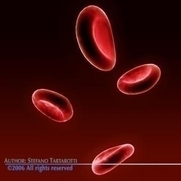 red blood cells 3d model c4d 3ds obj 78107