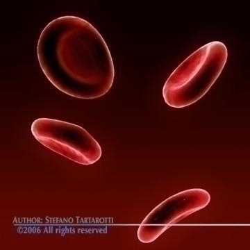 red blood cells 3d model c4d 3ds obj 78108