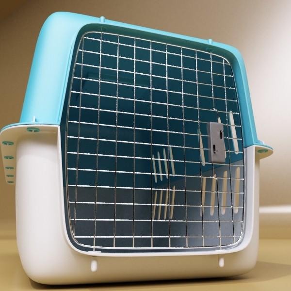 pet carrier high detailed 3d model 3ds max fbx 131704