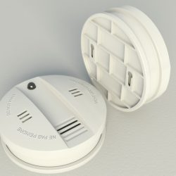 Smoke Alarm Flammex ( 192.14KB jpg by laguf )