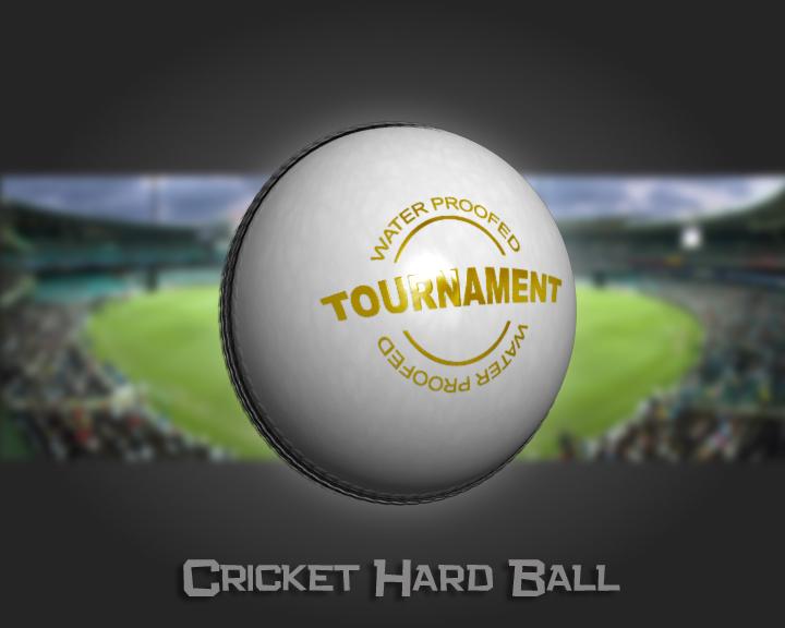 cricket hard ball 3d model 3ds max obj 115557