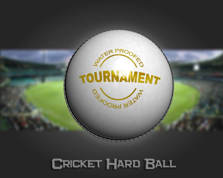 cricket hard ball 3d model 3ds max obj 115560