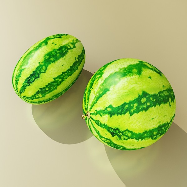 3D Model Watermelon High Res Texture ( 60.27KB jpg by VKModels )