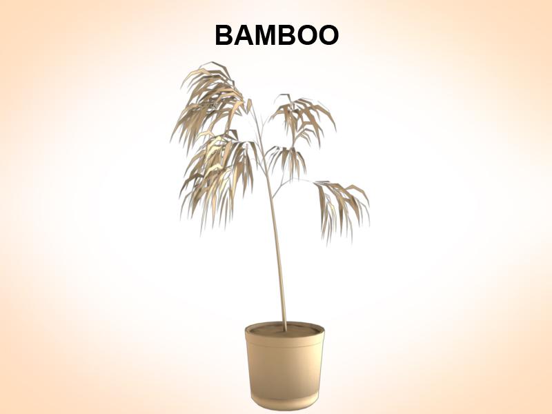 samhail bambú 3d 3ds fbx c4d le hrc xsi obj 123353