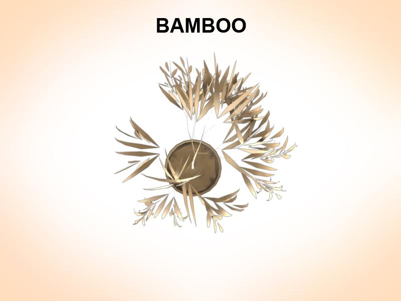 bamboo 3d model 3ds fbx c4d lwo ma mb hrc xsi obj 123354