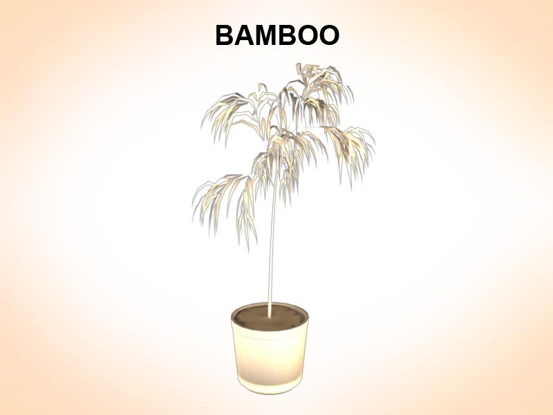 bamboo 3d model 3ds fbx c4d lwo ma mb hrc xsi obj 123355