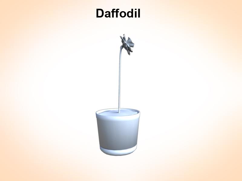 daffodil 3d model 3ds fbx c4d lwo ma mb hrc xsi obj 122311