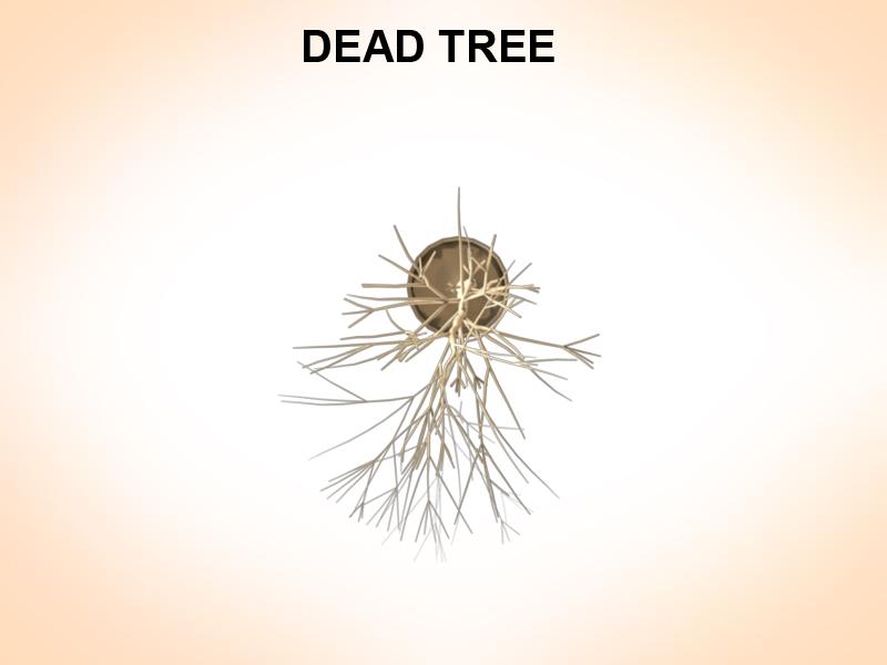 dead tree 3d model 3ds fbx c4d lwo ma mb hrc xsi obj 123362