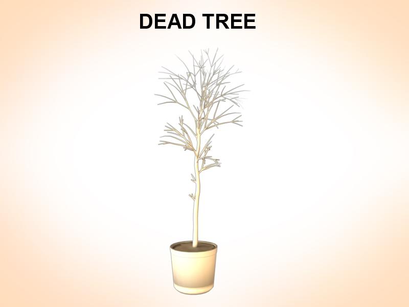 dead tree 3d model 3ds fbx c4d lwo ma mb hrc xsi obj 123363