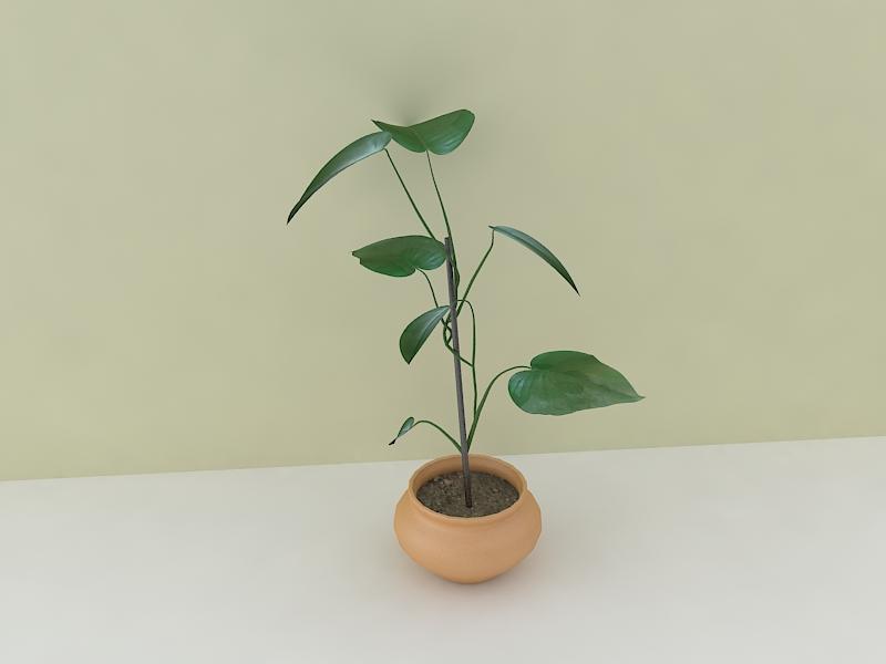 houseplant 3d model max 157211