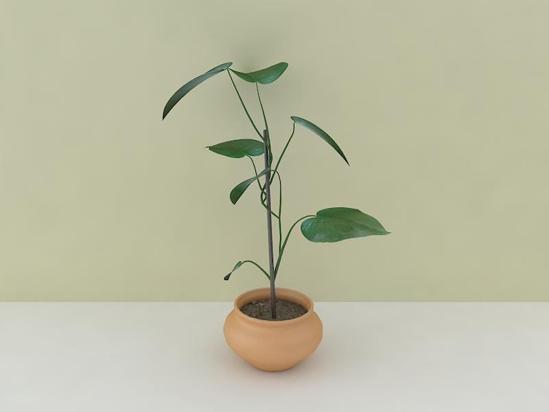 houseplant 3d model max 157212