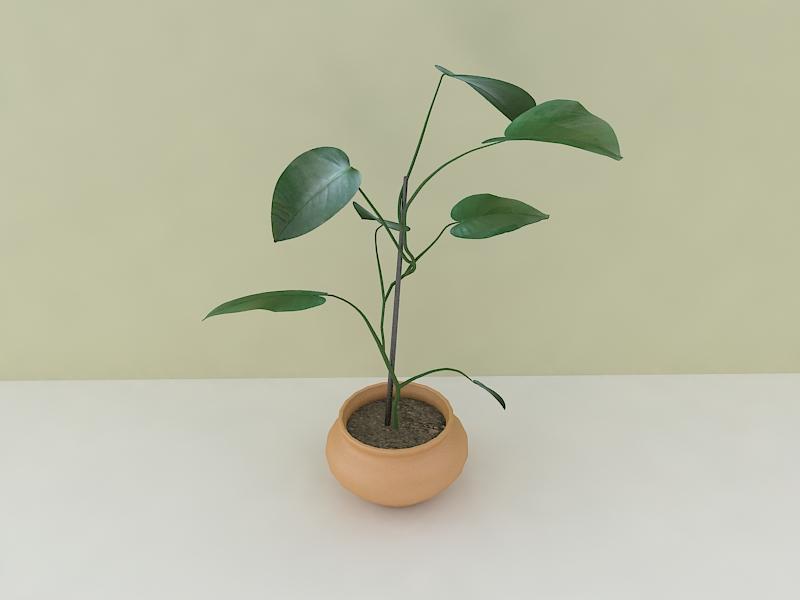 houseplant 3d model max 157213