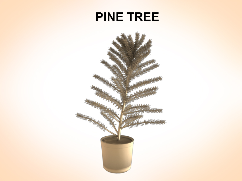 pine tree 3d model 3ds fbx c4d lwo ma mb hrc xsi obj 123584