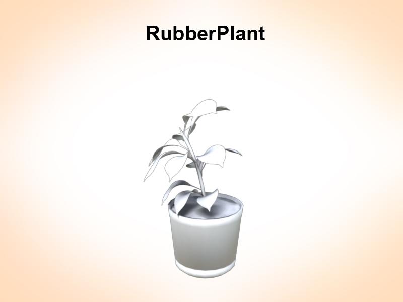 rubber plant 3d model 3ds fbx c4d lwo ma mb hrc xsi obj 123970