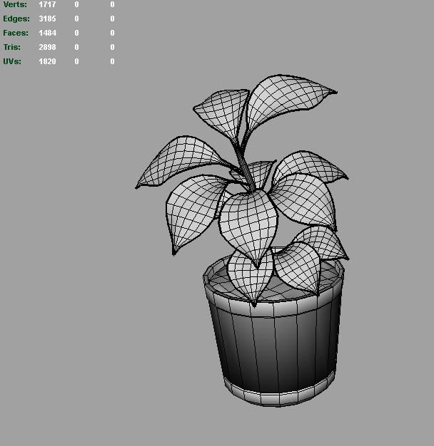rubber plant 3d model 3ds fbx c4d lwo ma mb hrc xsi obj 123972