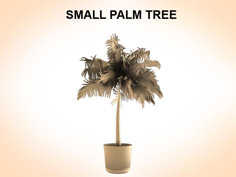 väike palm 3d mudel 3ds fbx c4d lwo ma mb hrc xsi obj 123591