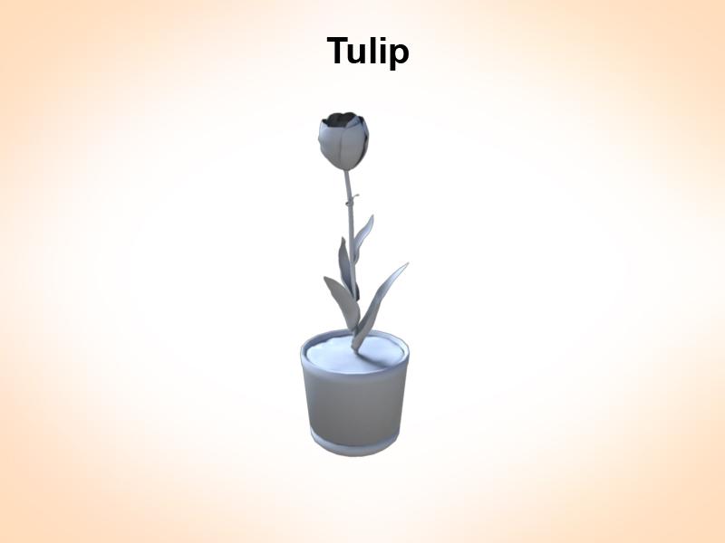 tulip 3d model 3ds fbx c4d lwo ma mb hrc xsi obj 123253