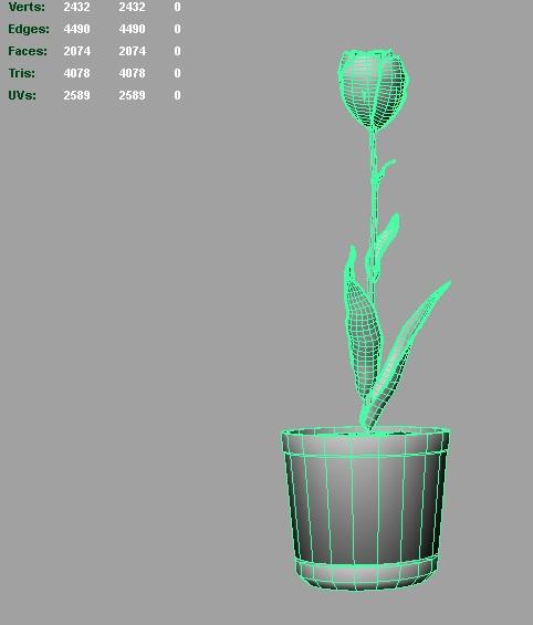 tulip 3d model 3ds fbx c4d lwo ma mb hrc xsi obj 123256