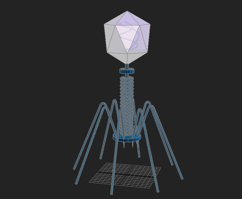 firws bacteriophage 3d max max 150293