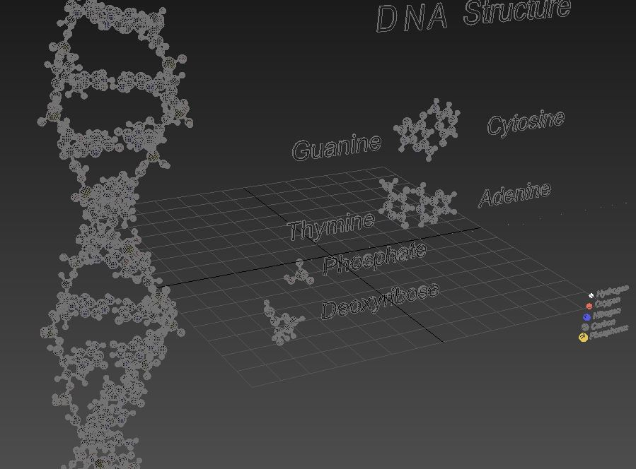 DNA Double Helix 3d model max max max max 164013