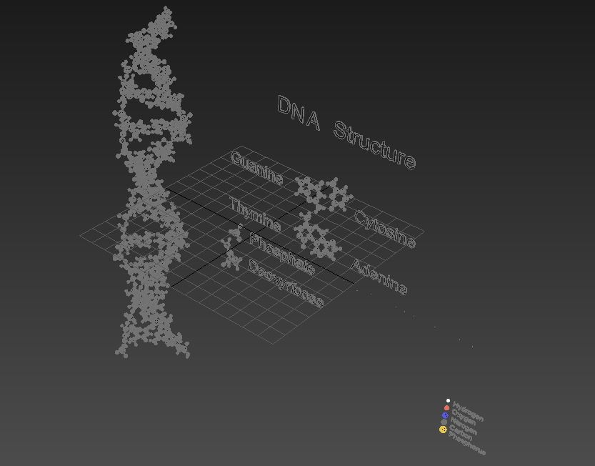 Dna Double Helix 3d Model Flatpyramid