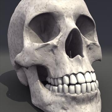 skull_human biomedical 3d model 3ds max fbx lwo ma mb hrc xsi obj 111107