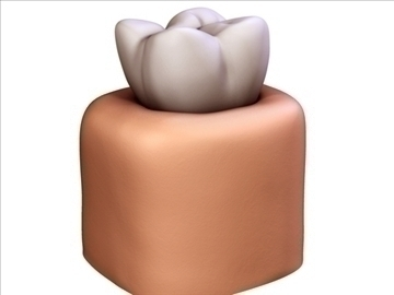 tooth v1 3d model 3ds max c4d lwo ma mb obj 97940